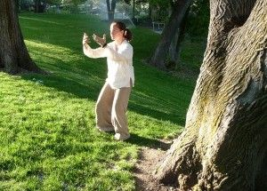How could traditional qigong exercises cure cancer ?