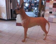 Ranch Dog Statue