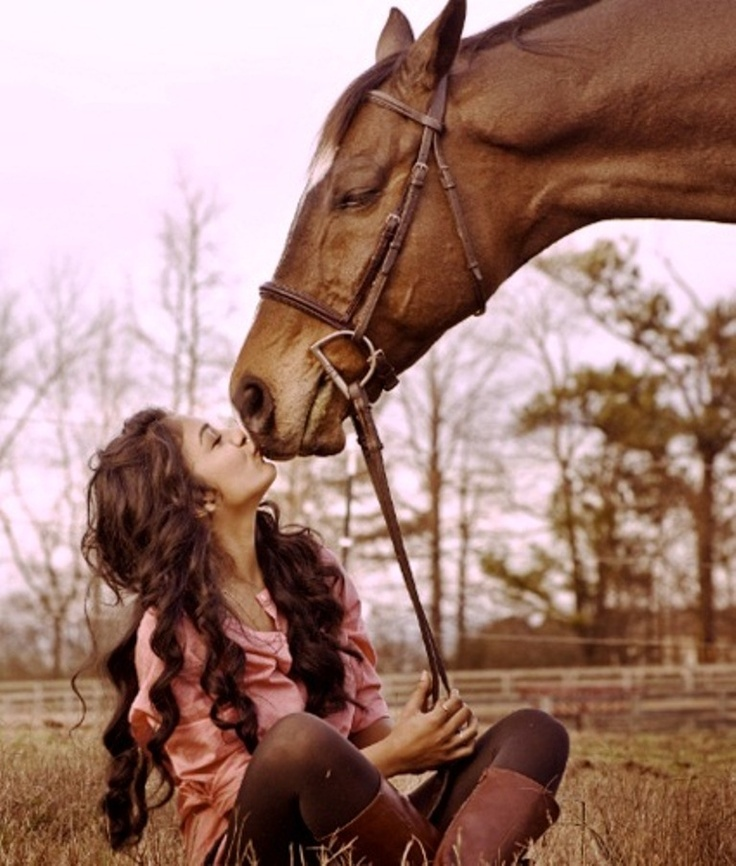 Love horses. So gentle and beautiful.