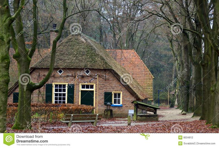 oude-boerderij-op-het-nederlandse-platteland-8034812.jpg 1.300×879 pixels