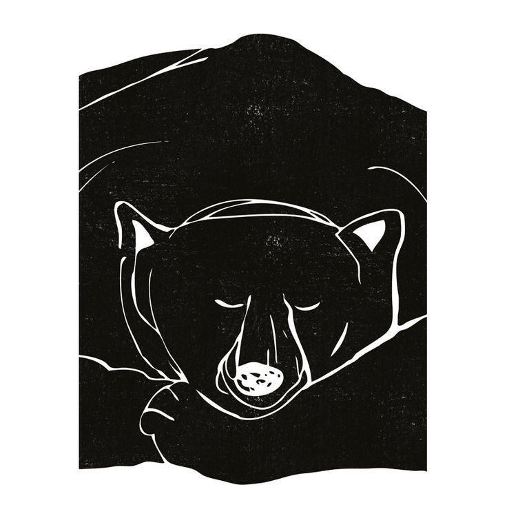 """Sleepy Bear"" poster - Size A3 (unframed) | room to decorate | scandinavian and vintage designed homewares - online shop"