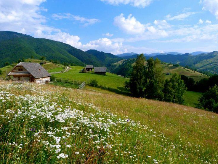 Transylvania-Brasov-Bran-Castle-Sibiu-Sighisoara-Viscri.jpg (960×720)