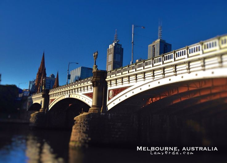 Melbourne Visitor Shuttle: A 5AUD Hop on hop off bus you will love