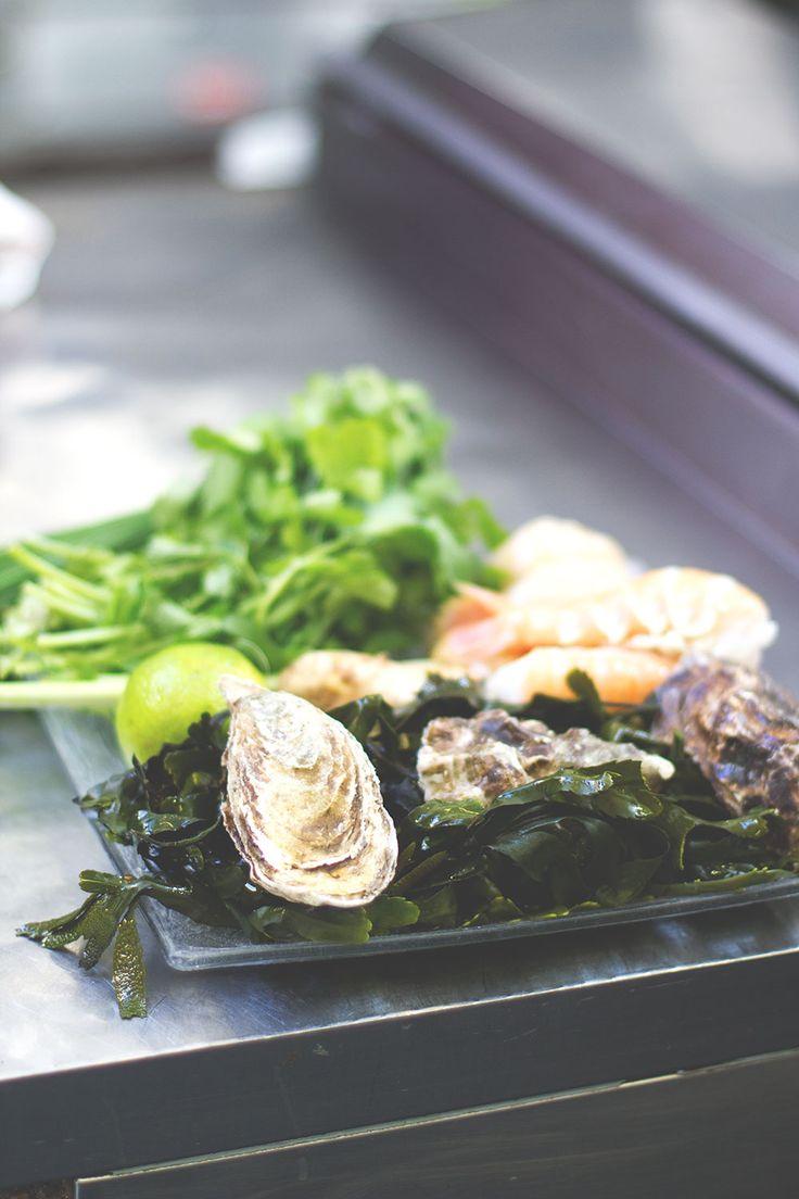 Frisches Seafood aus Kinsale und der Region -- Irland-Rundreise mit Kerrygold, Bord Bia und Tourism Ireland: Bulman Pub in Kinsale und Rinderfarm in Old Head