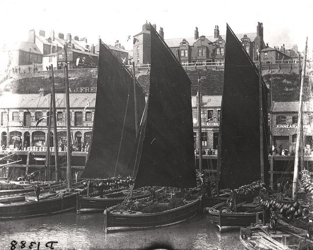 Herring boats, Fish Quay, North Shields, c.1890 |