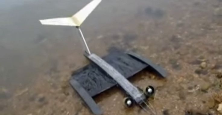 This drone has bat-like wings that morph with changing air conditions