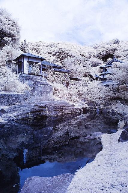 Japanese garden at Engaku-ji, Kamakura, Japan (円覚寺)  http://www.japanesegardens.jp/gardens/secret/000024.php