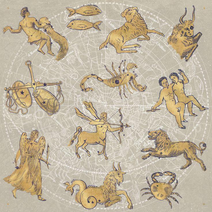 Gilded Zodiac by Sue Schlabach - canvas print