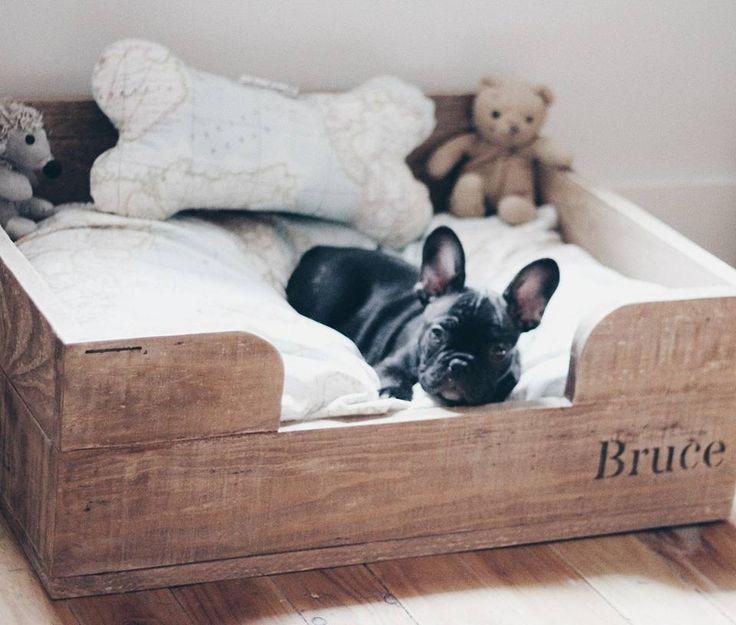 M s de 25 ideas incre bles sobre camas para perros en for Camas para perros de madera