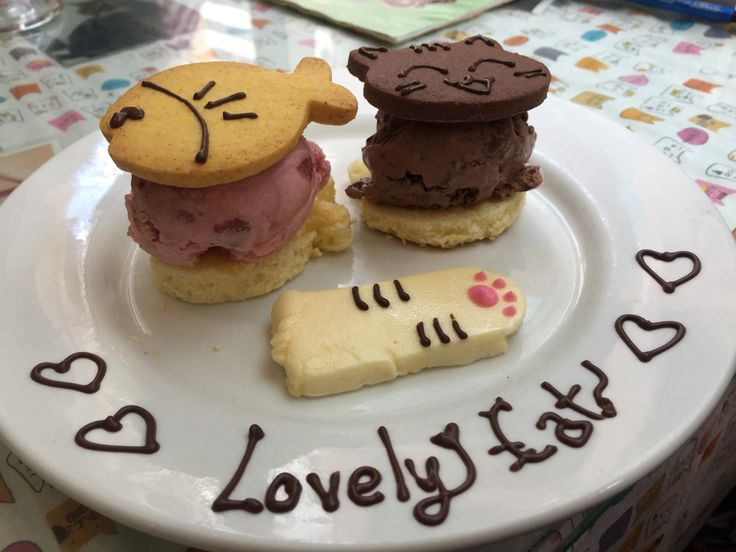 We visited Ah Meow Cat Cafe in Hong Kong, and it was awesome. Read about it on our shiny new blog!
