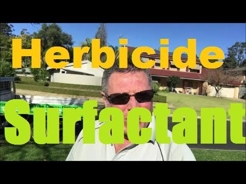 [Herbicide Surfactant] [Herbicide Spraying] [Herbicide Weed Control] Surfactants or Wetting Agents for Herbicides at https://youtu.be/WXjvoHW3BD8