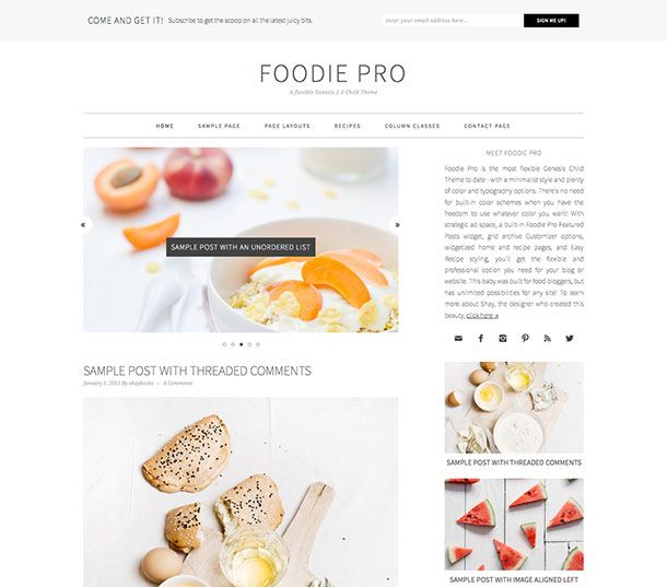 10 best food blog templates images on pinterest wordpress foodie pro wordpress theme forumfinder Choice Image