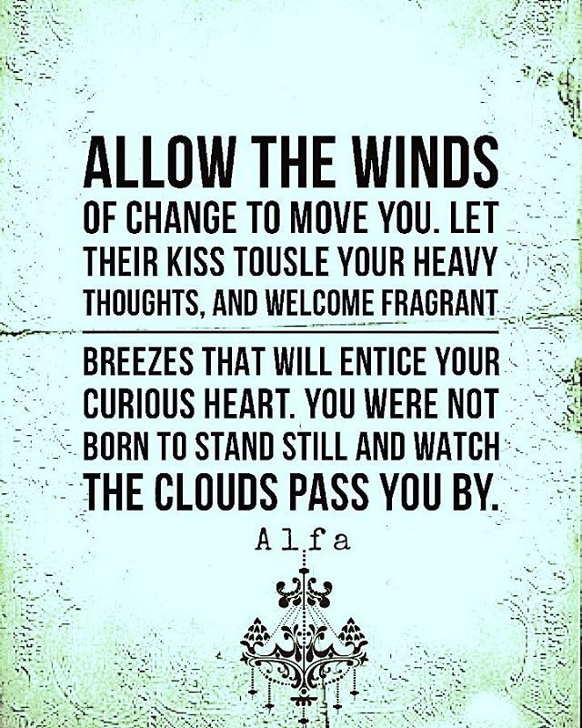 """232 Likes, 2 Comments - Alfa (@alfa.poet) on Instagram: """"Allow the winds of change to move you. ~ Alfa ☜ . . . ."""""""
