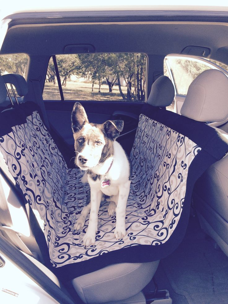 Sewing Pattern: DIY Car Seat Hammock for Dogs