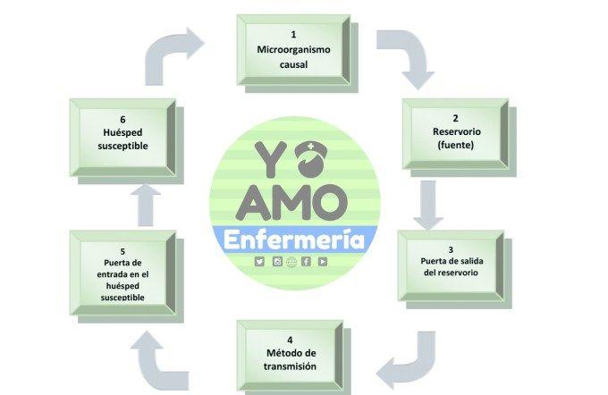 Cadena Epidemiológica Cadena Epidemiologica Epidemiológica Proceso Enfermero