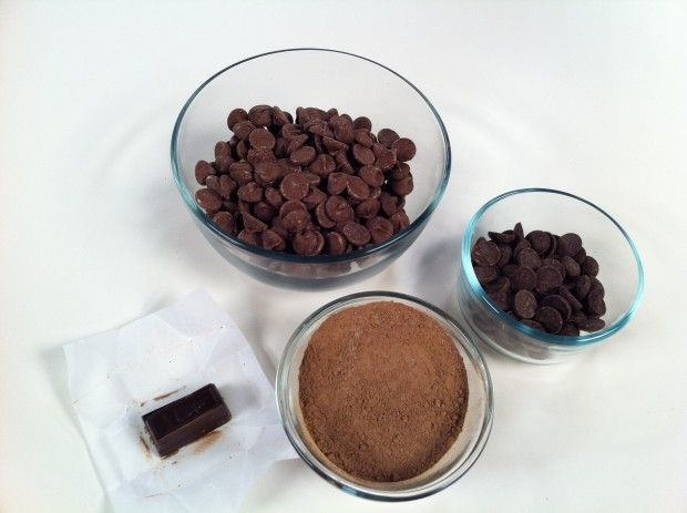 My Dog ate Chocolate - Chocloate and Cats - Chocolate Poisoning
