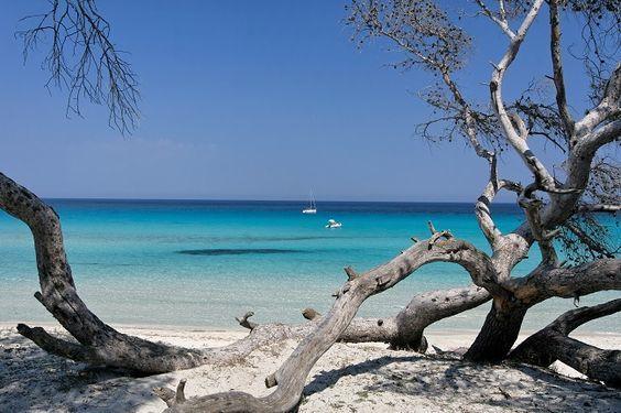 Corse : les 10 plus belles plages - Marie France
