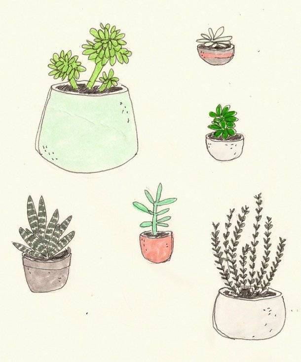Imgs For U0026gt; Cactus Drawing Tumblr | Cacti | Pinterest | Diy Wall Art And Drawings