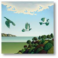 Swoop -med by Hamish Allan - prints