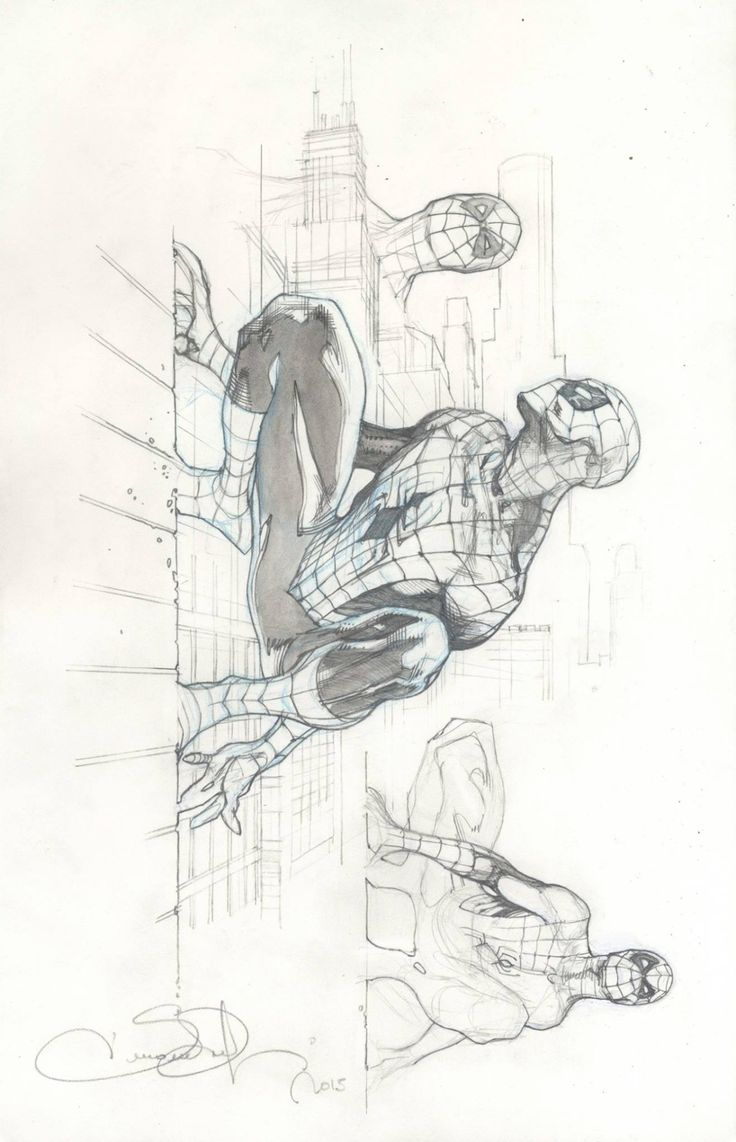bear1na:Spider-Man sketch by Simone Bianchi *