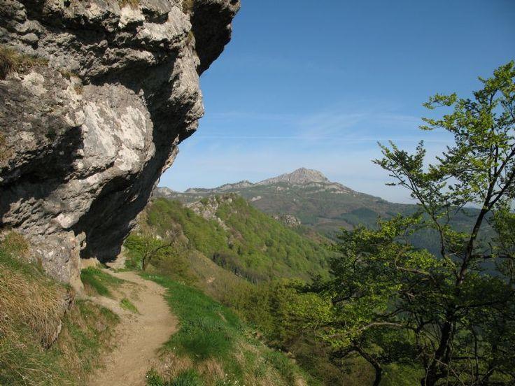 Ruta: Gorbea por Saldropo (Alto de Barazar)