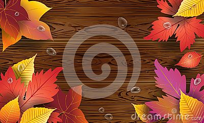 Autumn wallpaper with maple tree leaves, water drops on brown wooden background vector illustration. Brown wood texture fall season decoration for holiday design. Thanksgiving, Oktoberfest, Birthday, Sale, Halloween poster