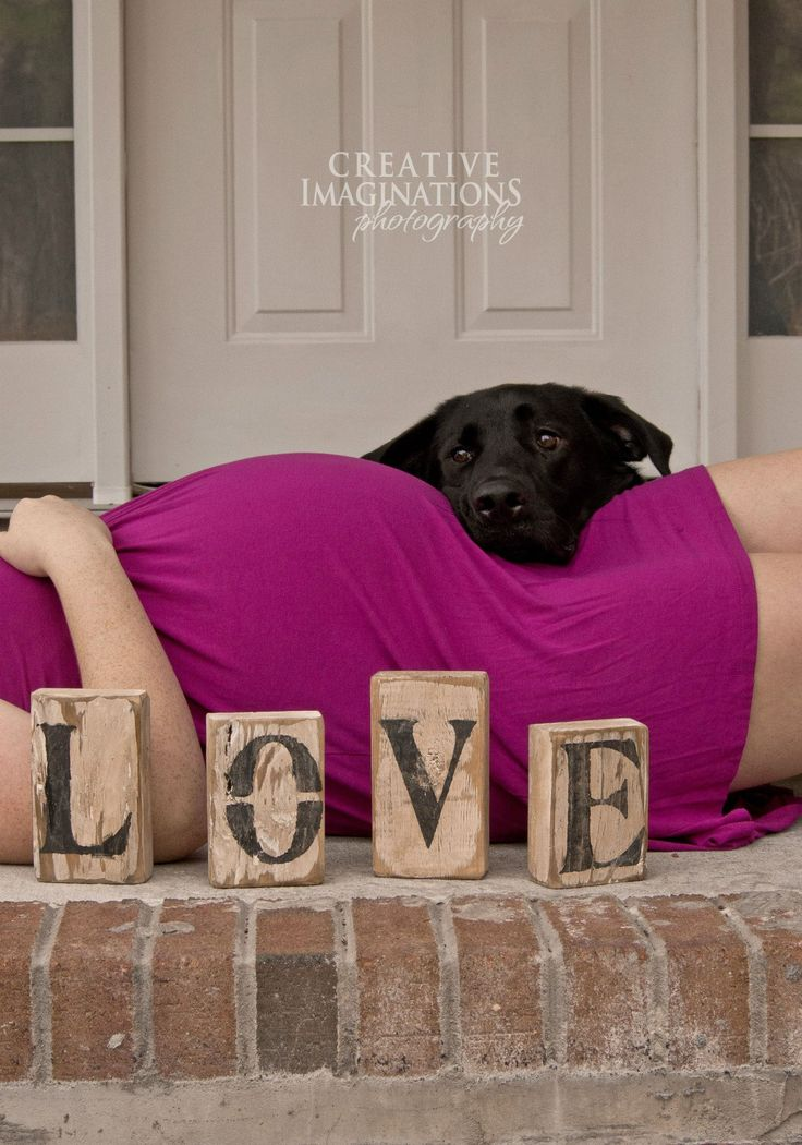 Maternity picture with puppy dog