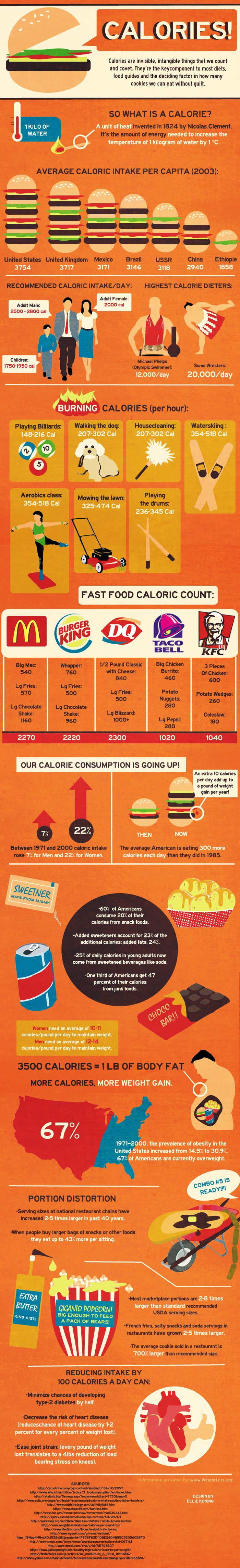 The Cost of Calories Infographic - Bulletin Board/Poster