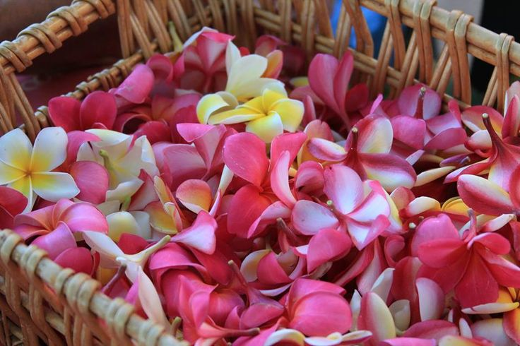 May Day is Lei Day in Hawaii.