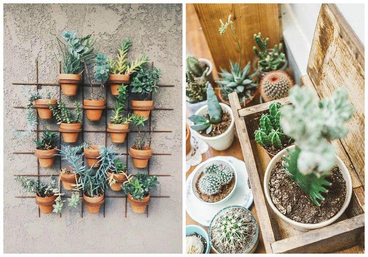 Les 60 meilleures images propos de plantes et jardins sur pinterest jardins arrangements de - Decorer terras avec plantes ...