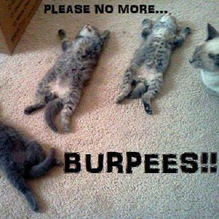 Burpees!!!
