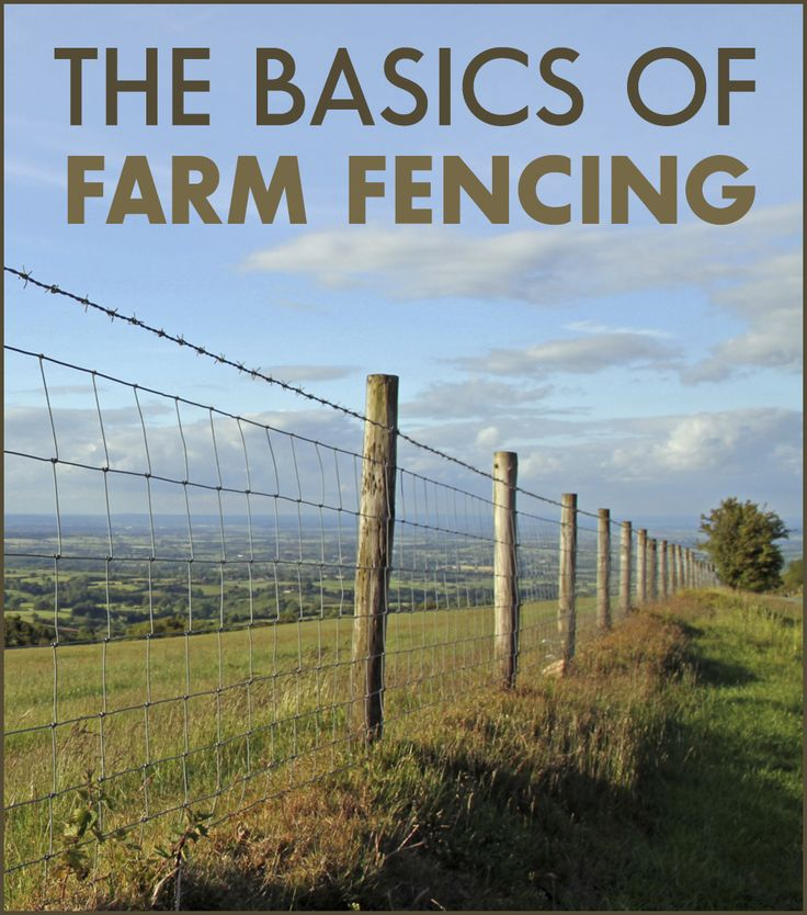 211 best Fences images on Pinterest | Cattle, Garden fences and ...