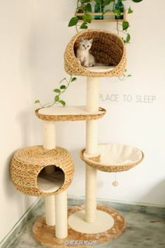 Fancy - Not only yourself, your cat also need a nice place to sleep