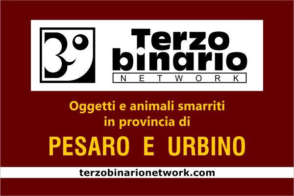Oggetti e animali smarriti in provincia di Pesaro e Urbino