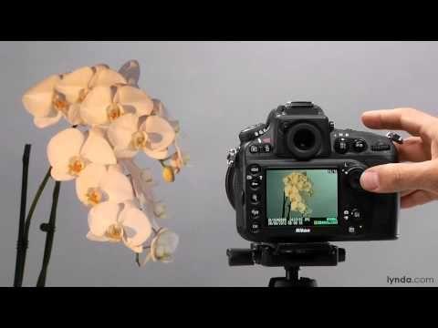 Nikon D800 tutorial: Manual white balance | lynda.com - YouTube + Plus many more Lynda tutorials listed for the D800