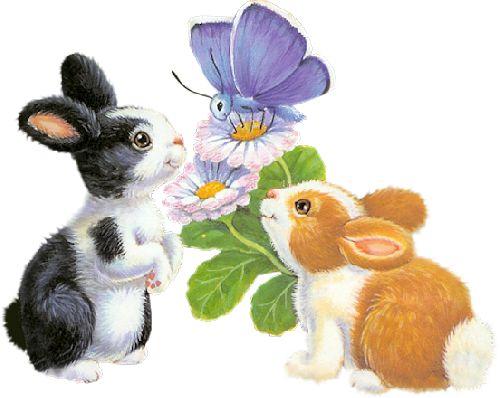 297 besten R.M. - Tiere + niedlich Bilder auf Pinterest | Niedlich ...
