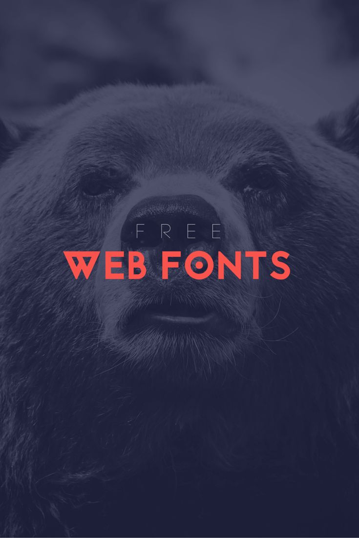 Not Sure What Font Looks Best for Web? Check out these go-to's that always look great in any design!
