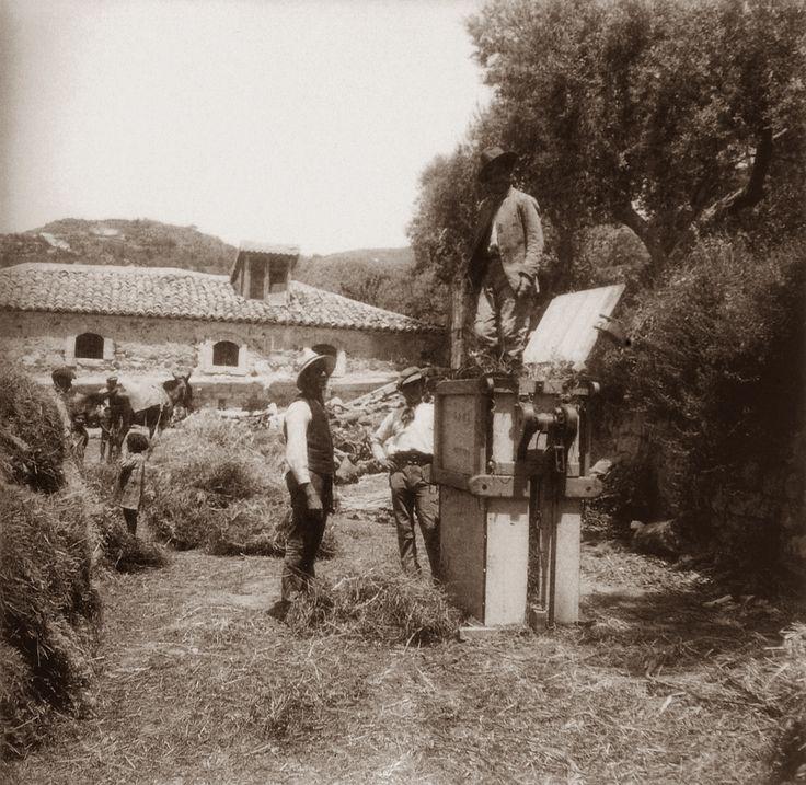 Giovanni Verga, Scrittore e Fotografo