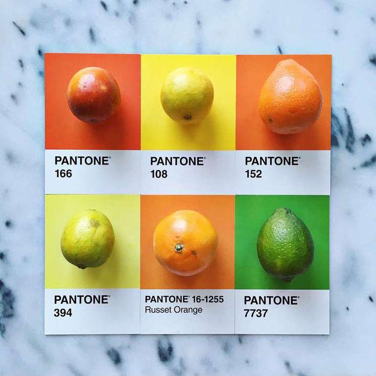 Pantone Food Turning Colorful Ingredients Into