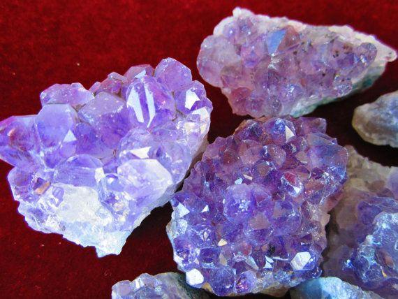 WHOLESALE 1 Lb Lot of 2 Oz AMETHYST CRYSTALS Geode Clusters Druze Mineral Grade A Natural Purple Quartz Crystals - Brazil by GeoSpecimens 16.74
