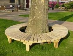 seats around trees - Google Search