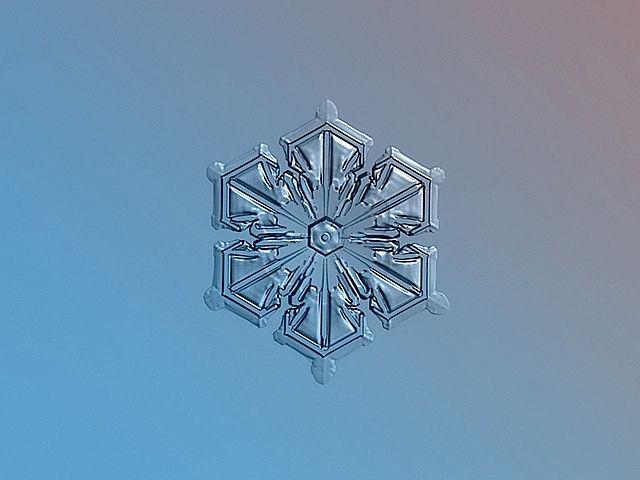 Case Study: Macro Snowflakes Photos Taken with a camera, retouched