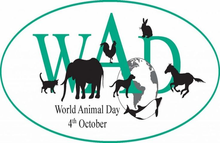 World Animal Day 2013 | Politics | The Earth Times