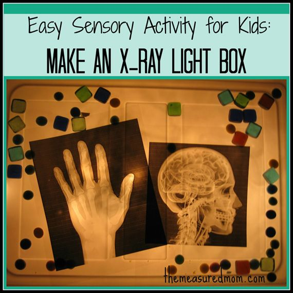Easy Sensory Activity for Kids: Make an X-Ray Light Box from The Measured Mom