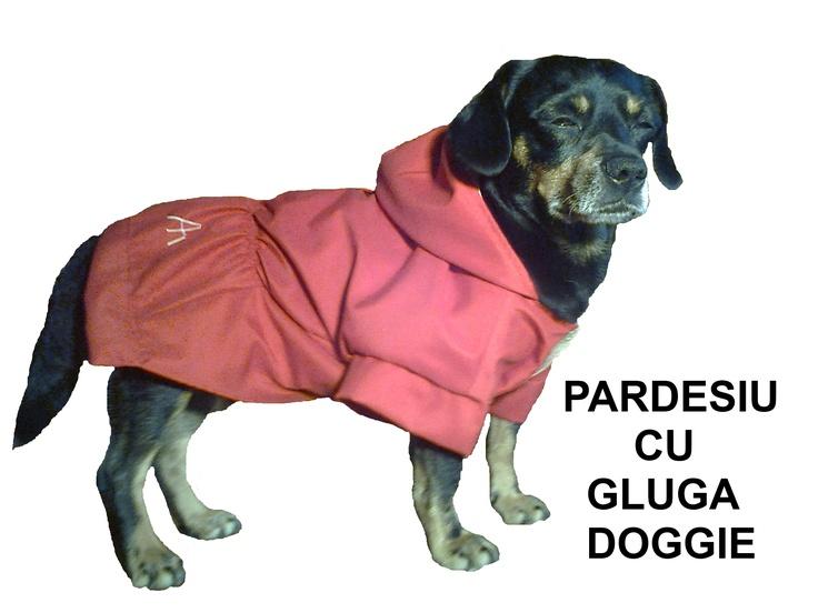 Pardesiu DOGGIE