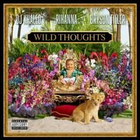 Wild Thoughts (feat. Rihanna & Bryson Tiller) by DJ Khaled on SoundCloud