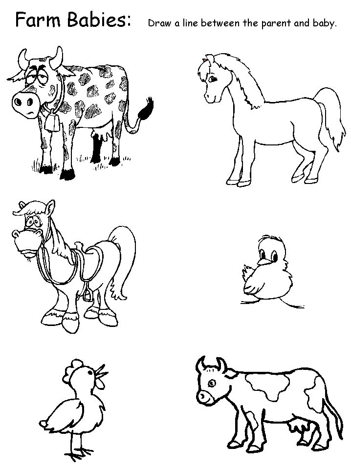 Animal Coloring Pages Esl