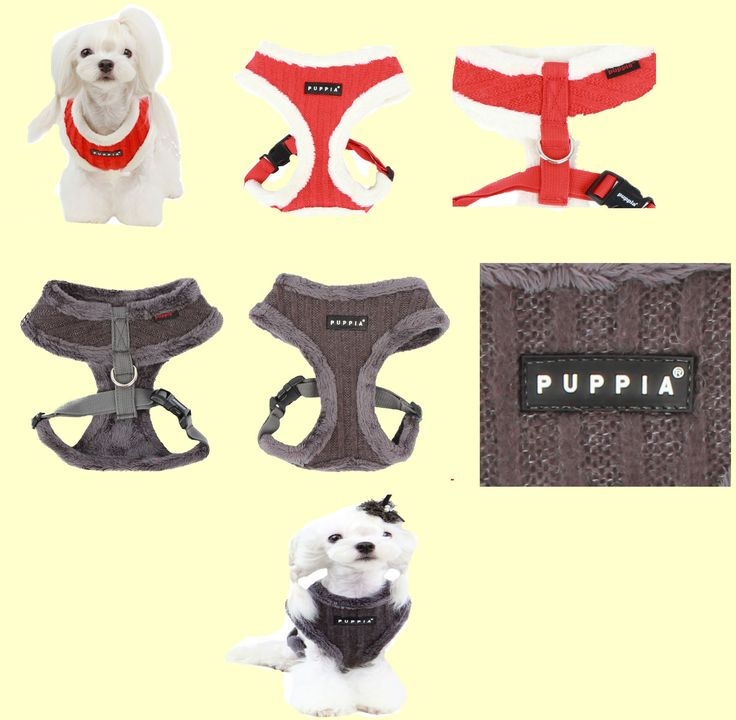 New Modish (Winter) harness from Puppia!  This harness has a vertical striped and solid pattern.  It comes in 2 colours (orange-red or grey) and in 3 sizes (small, medium and large). This harness retails for $29.00