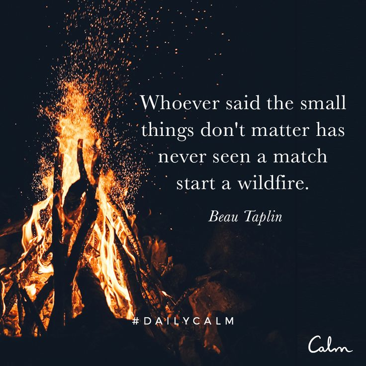 Whoever said the small things don't matter has never seen a match start a wildfire. Beau Taplin