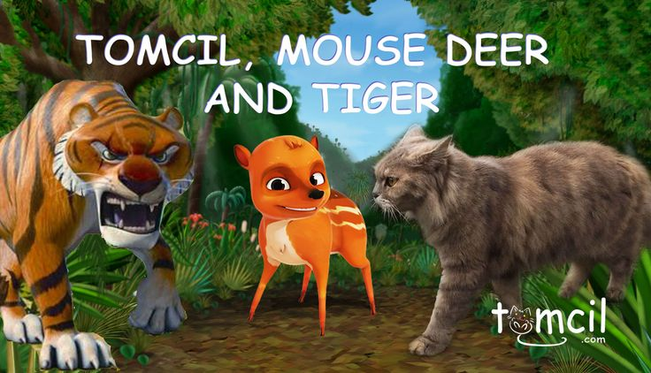 TOMCIL, MOUSE DEER AND TIGER | Storytelling for Children